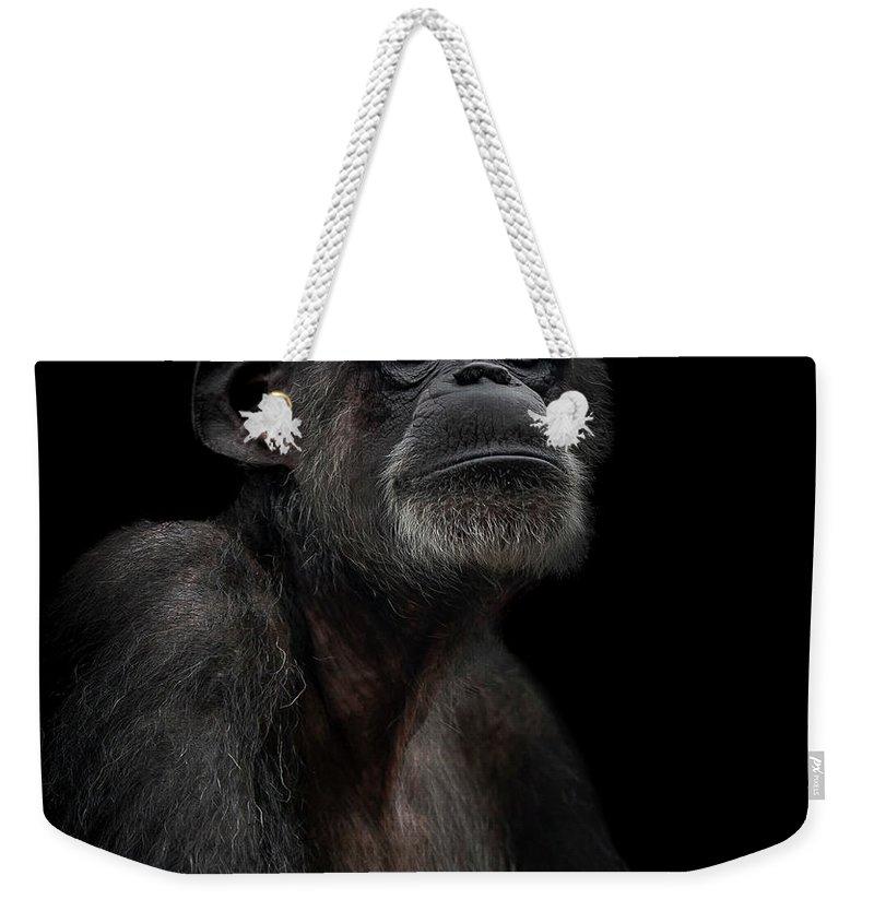 Chimpanzee Weekender Tote Bags