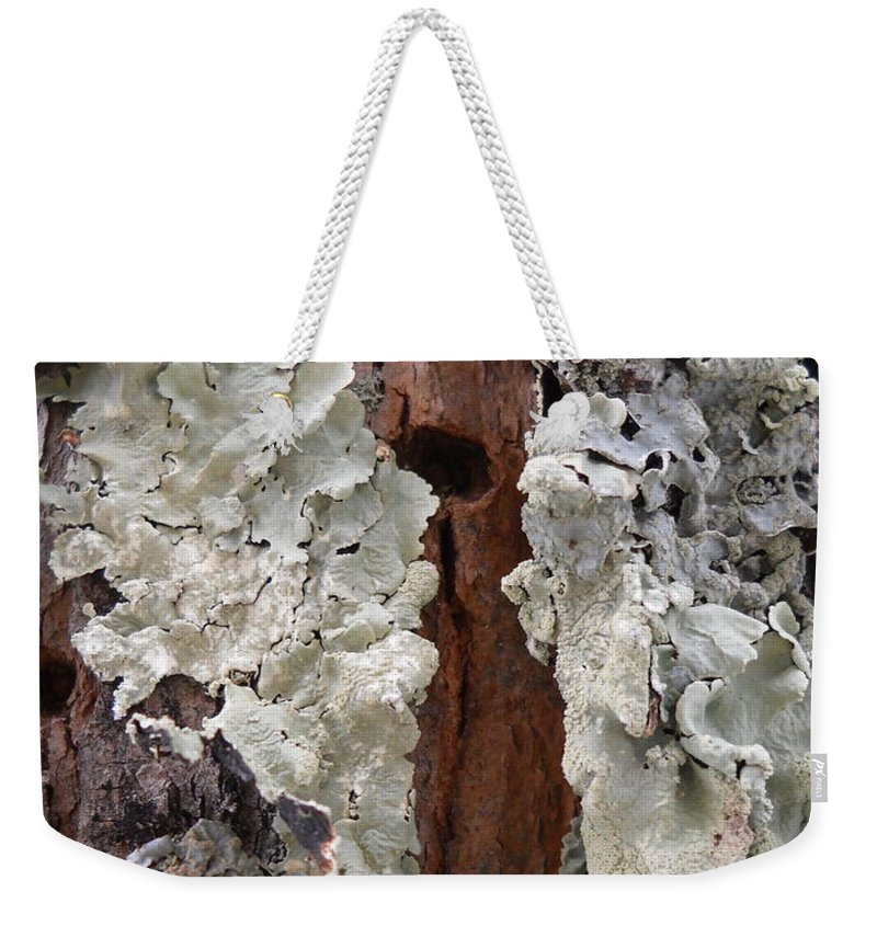 Fungi Weekender Tote Bag featuring the photograph North Side Of A Tree by Kent Lorentzen