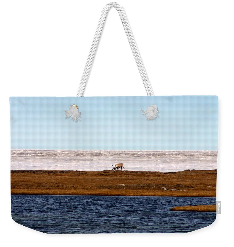 Arctic Weekender Tote Bag featuring the photograph North Slope by Anthony Jones