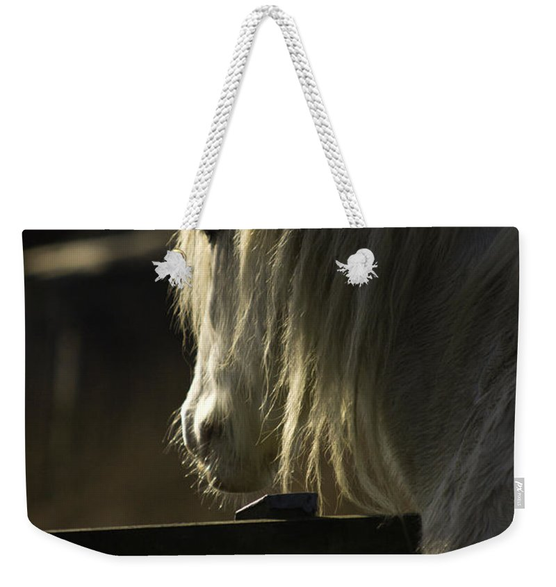 Horse Weekender Tote Bag featuring the photograph Nostalgy by Angel Ciesniarska