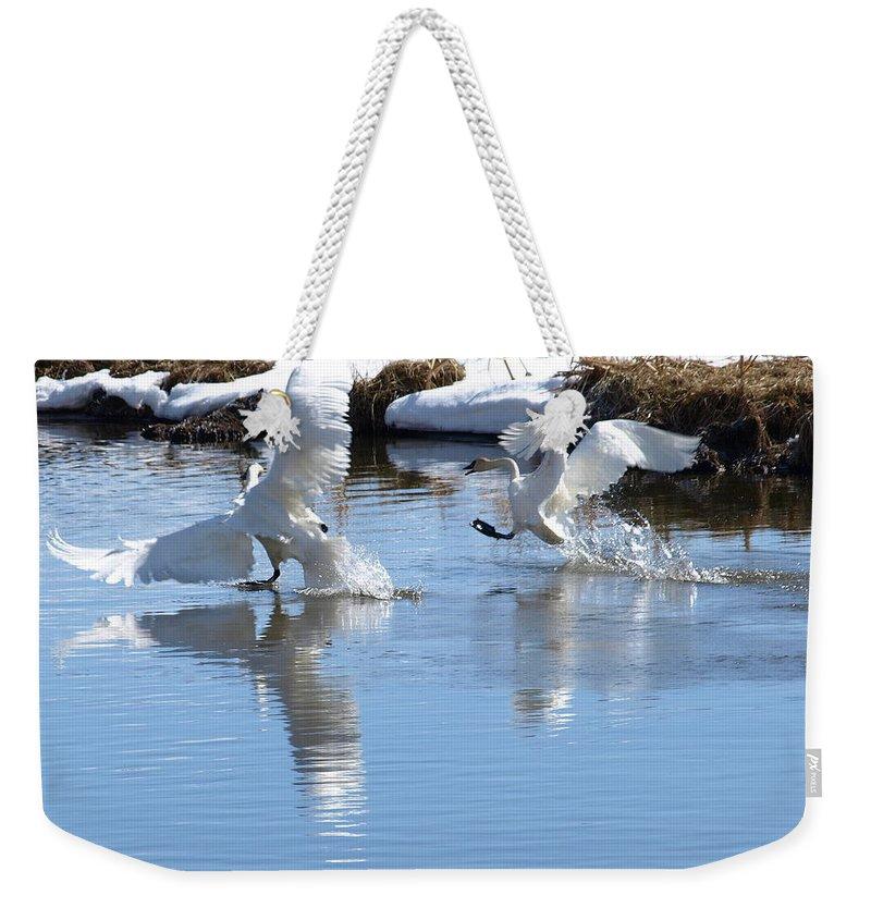 Birds Weekender Tote Bag featuring the photograph Not Always Graceful by DeeLon Merritt