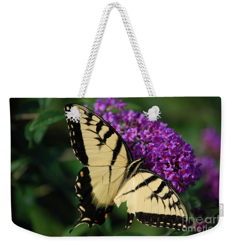 Butterfly Weekender Tote Bag featuring the photograph Nothing Is Perfect by Debbi Granruth