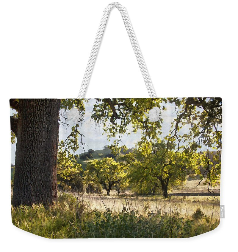 Tree Weekender Tote Bag featuring the digital art Oak Meadow by Sharon Foster