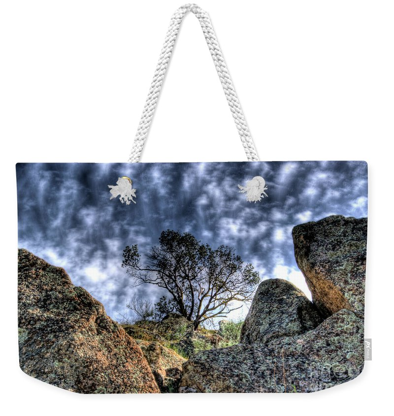 Oak Weekender Tote Bag featuring the photograph Oak Tree by Jim And Emily Bush