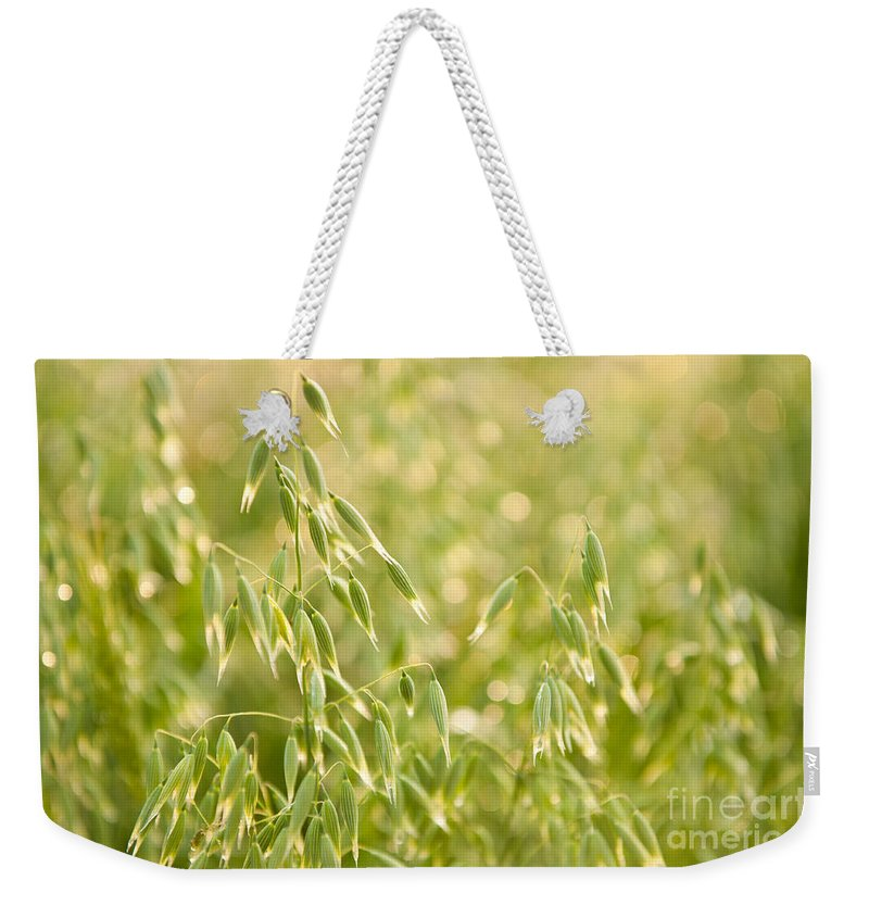 Oats Weekender Tote Bag featuring the photograph Oats Plants Detail by Arletta Cwalina
