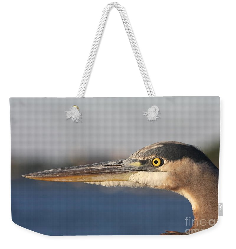 Heron Weekender Tote Bag featuring the photograph Observant Eye - Heron Portrait by Christiane Schulze Art And Photography