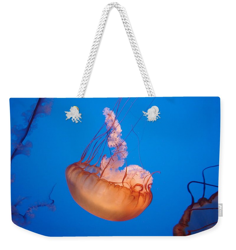 Jellyfish Weekender Tote Bag featuring the photograph Ocean Beauty by Brittany Horton