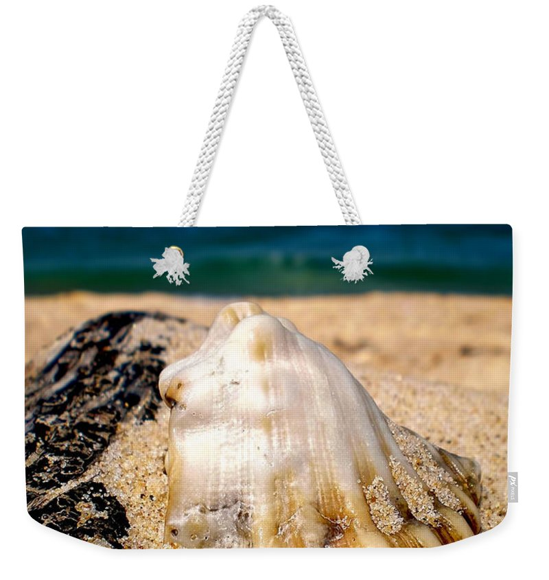 Photography Weekender Tote Bag featuring the photograph Ocean Beyond A Shell by Kaye Menner