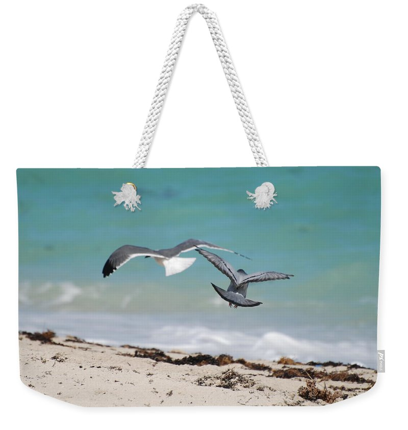 Sea Scape Weekender Tote Bag featuring the photograph Ocean Birds by Rob Hans