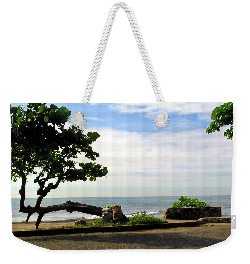 Tree Weekender Tote Bag featuring the photograph Ocean Formed Tree by Douglas Barnett