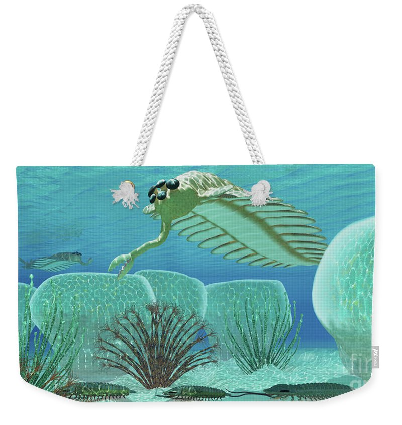 3d Illustration Weekender Tote Bag featuring the painting Ocean Opabinia by Corey Ford