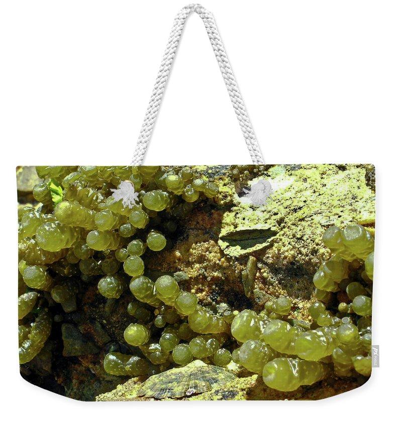 Ocean Weekender Tote Bag featuring the photograph Ocean Seaside Delight by Douglas Barnett