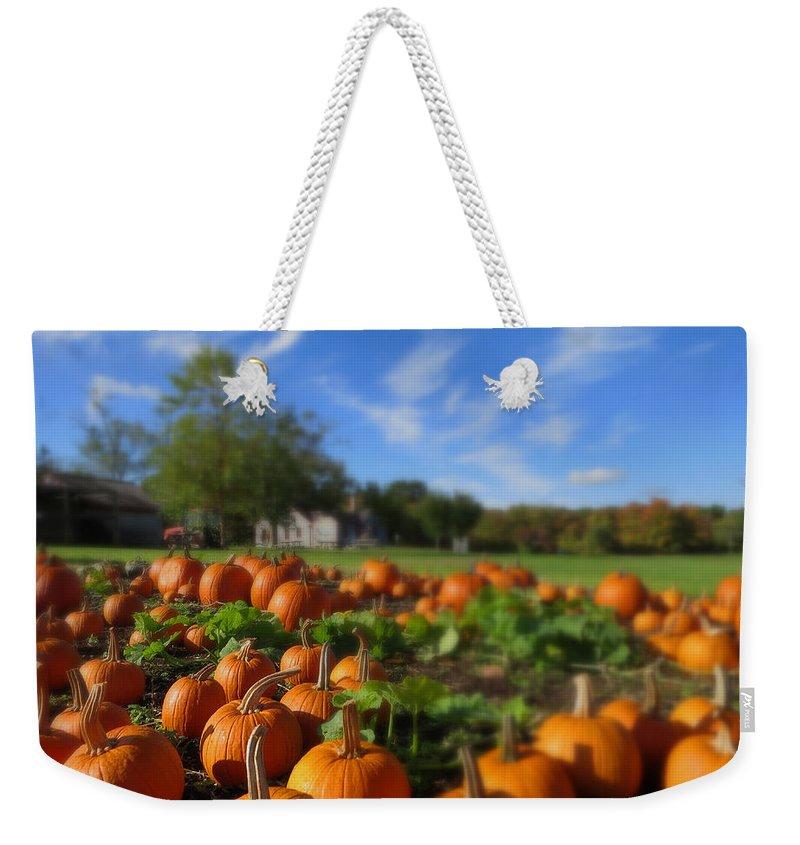 Pumpkins Weekender Tote Bag featuring the photograph October Postcard by Dianne Cowen