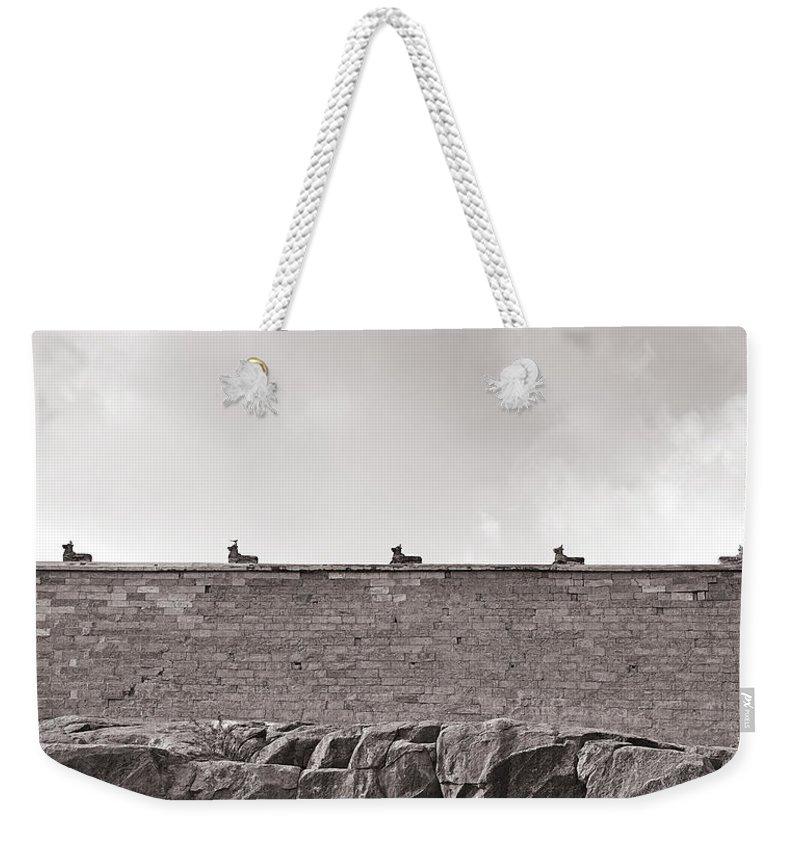 Krishnan Srinivasan Weekender Tote Bag featuring the photograph Odd by Krishnan Srinivasan