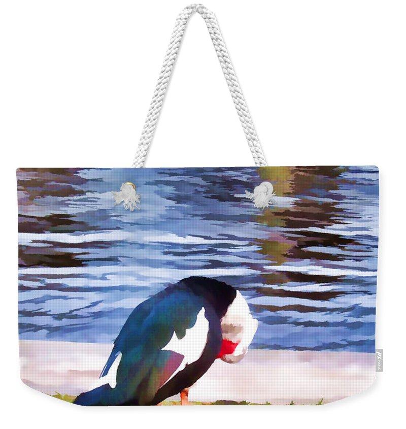 Profile Weekender Tote Bag featuring the painting Odd Looking Duck In Swansboro Nc by Jeelan Clark