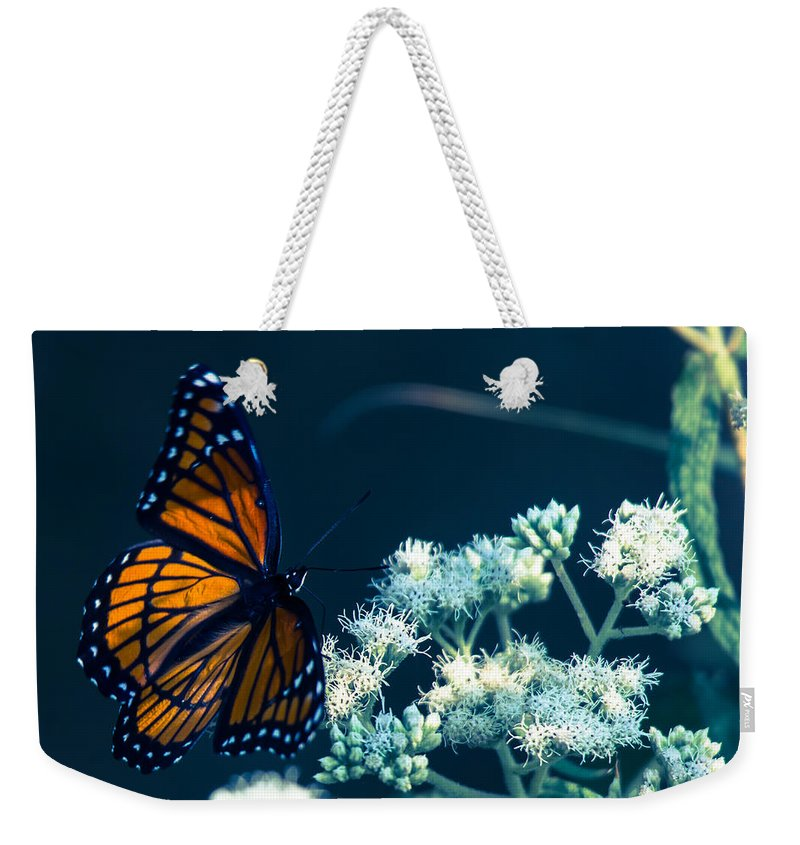 Butterfly Weekender Tote Bag featuring the photograph Offer Of Forgivness by Kristin Hunt