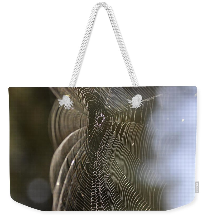 Clay Weekender Tote Bag featuring the photograph Oh What Webs We Weave by Clayton Bruster