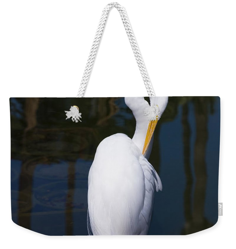 Egret Weekender Tote Bag featuring the photograph Oh Yea Thats The Spot by Dennis Reagan