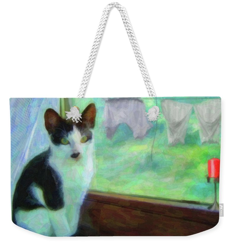 Ok I'll Pose Weekender Tote Bag featuring the painting Ok I'll Pose - Painting - By Liane Wright by L Wright