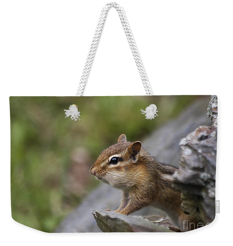 Chipmunk Weekender Tote Bag featuring the photograph Ok So My Cheeks Are Full by Deborah Benoit