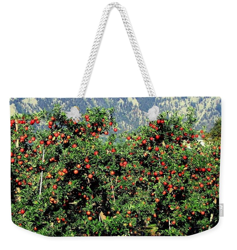 Apples Weekender Tote Bag featuring the photograph Okanagan Valley Apples by Will Borden