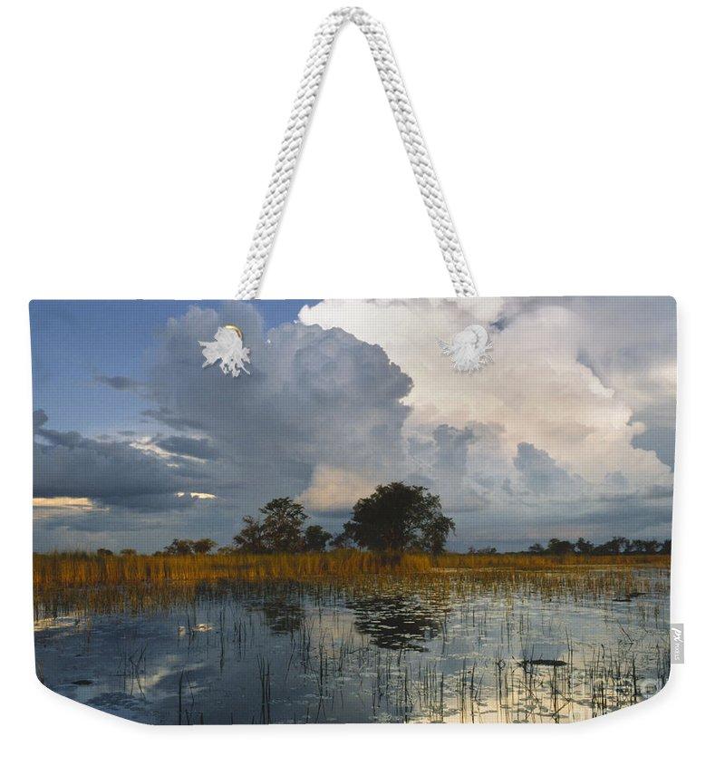Africa Weekender Tote Bag featuring the photograph Okavango Delta Evening by Sandra Bronstein