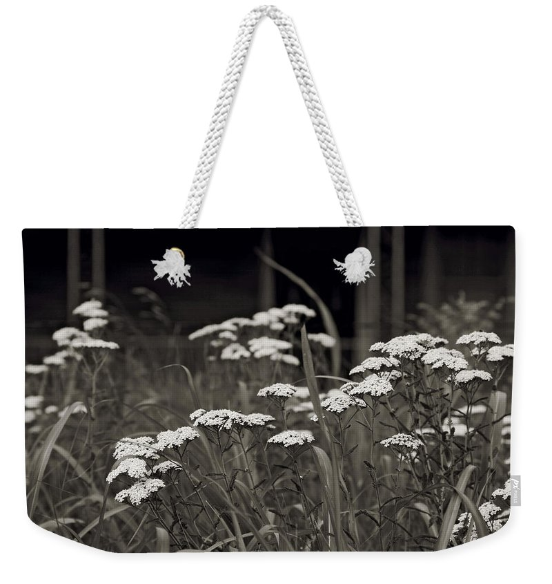 Flowers Weekender Tote Bag featuring the photograph Oklahoma Prairie Flowers by Toni Hopper