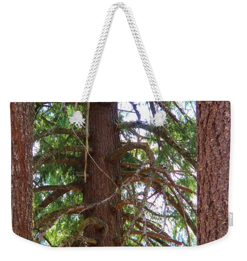 Douglas Fir Weekender Tote Bag featuring the photograph Old Soul by Wendy Rickwalt