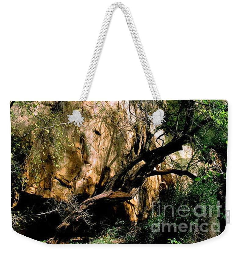 Trees Weekender Tote Bag featuring the photograph Old Tree by Kathy McClure
