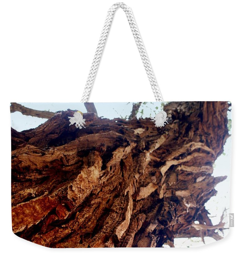 Tree Weekender Tote Bag featuring the photograph Old Tree by Marty Koch