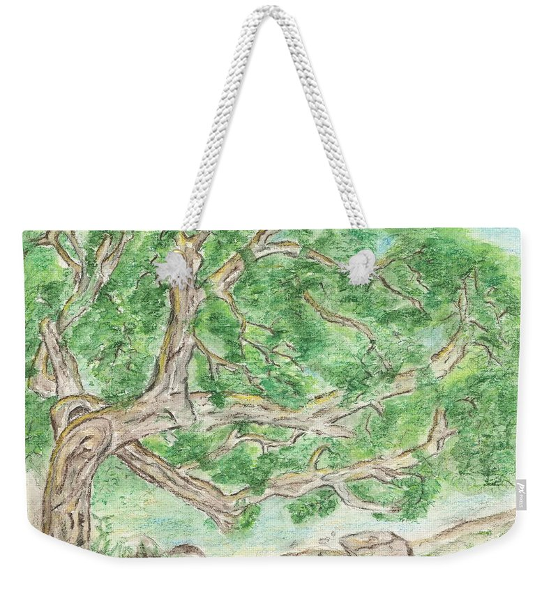 Tree Weekender Tote Bag featuring the painting Old Tree by Sara Stevenson