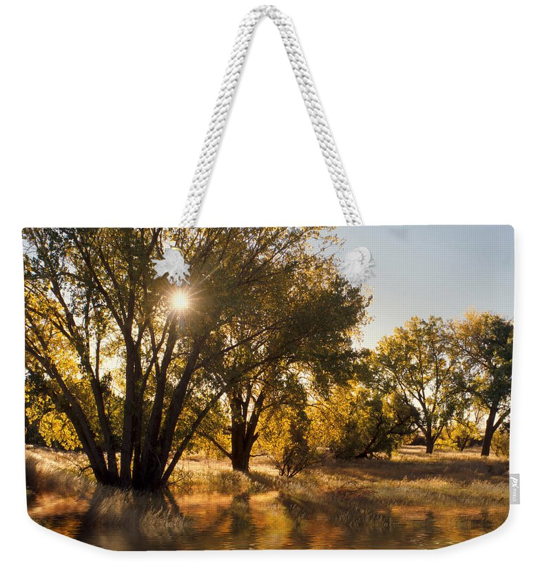Ftrees Weekender Tote Bag featuring the photograph Oliver Sunbursts by Jerry McElroy