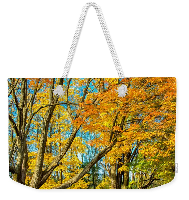 Steve Harrington Weekender Tote Bag featuring the photograph On A Country Road 5 - Paint by Steve Harrington