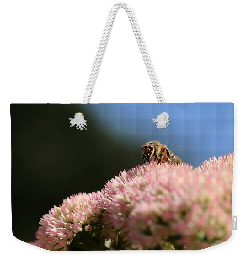 Bee Weekender Tote Bag featuring the photograph On Flower Mountain by Angela Rath