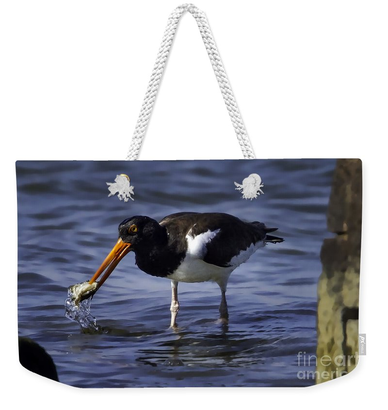 On The Half Shell Weekender Tote Bag featuring the photograph On The Half Shell by Gary Holmes
