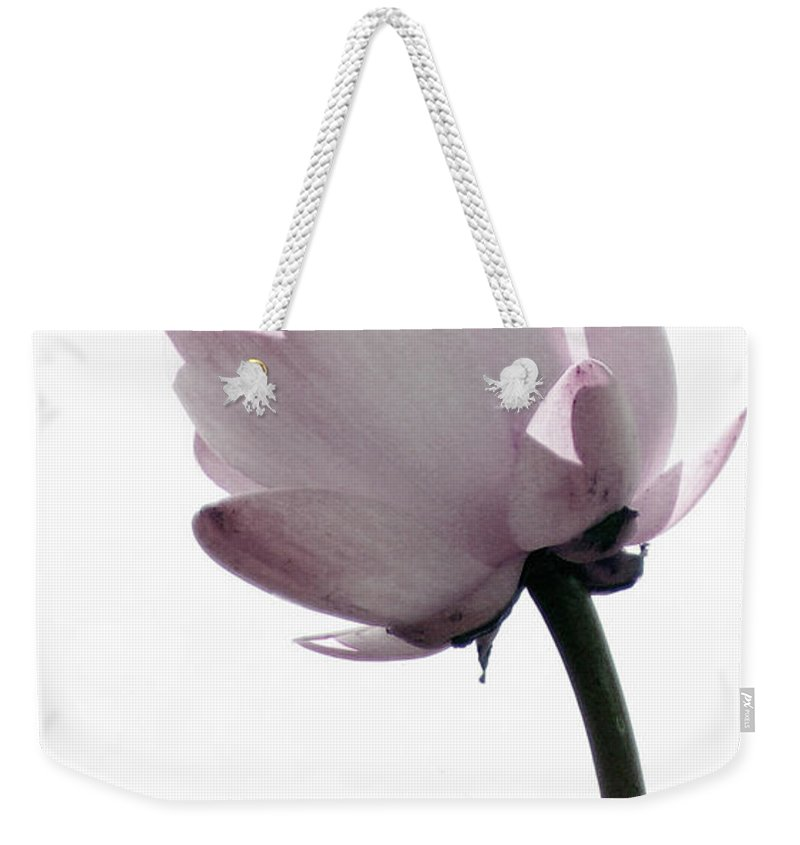 Lotus Weekender Tote Bag featuring the photograph On The Inside by Amanda Barcon