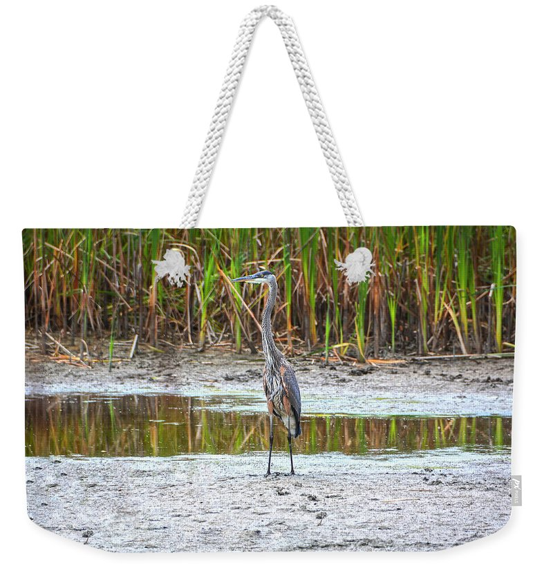 Heron Weekender Tote Bag featuring the photograph On The Prowl by Angelo Marcialis Melody Of Light Photography