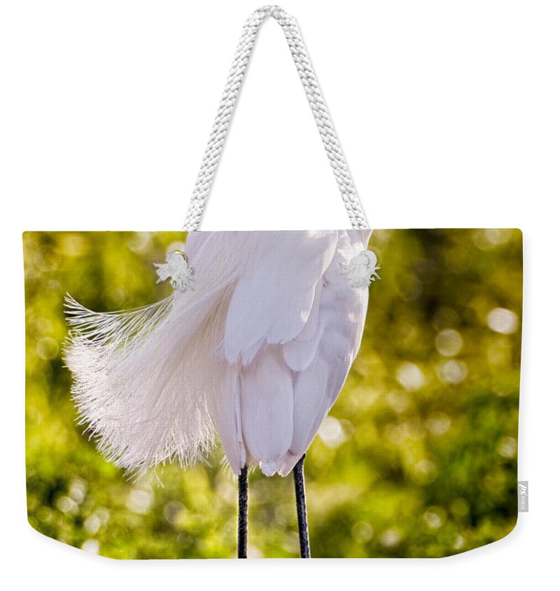 snowy Egret Weekender Tote Bag featuring the photograph On Watch by Christopher Holmes