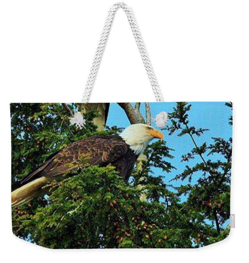 Canada Weekender Tote Bag featuring the photograph On Watch by Emma Twamley