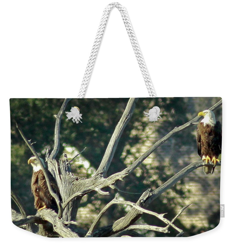 Bald Eagle Weekender Tote Bag featuring the photograph On Watch by Phill Doherty