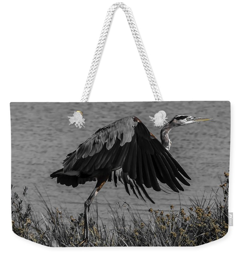 Bird Weekender Tote Bag featuring the photograph On Your Mark by Leticia Latocki