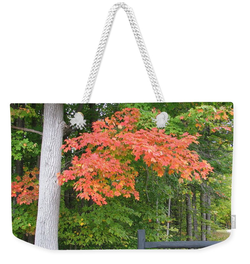 Fall Weekender Tote Bag featuring the photograph Onaway by Kelly Mezzapelle