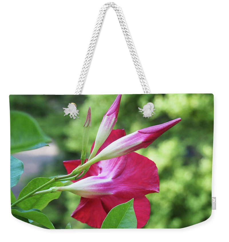 Floral Weekender Tote Bag featuring the photograph One Bloom by BiR Fotos