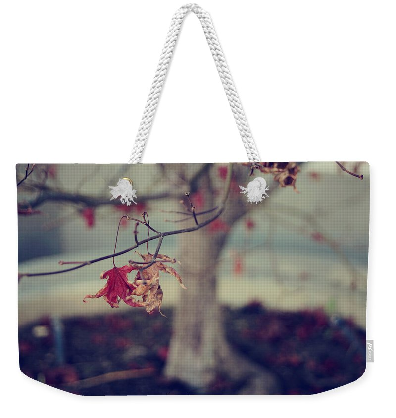 Leaves Weekender Tote Bag featuring the photograph One Last Kiss by Laurie Search