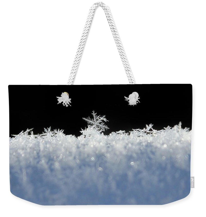 Snow Weekender Tote Bag featuring the photograph One Of A Kind by Penny Meyers