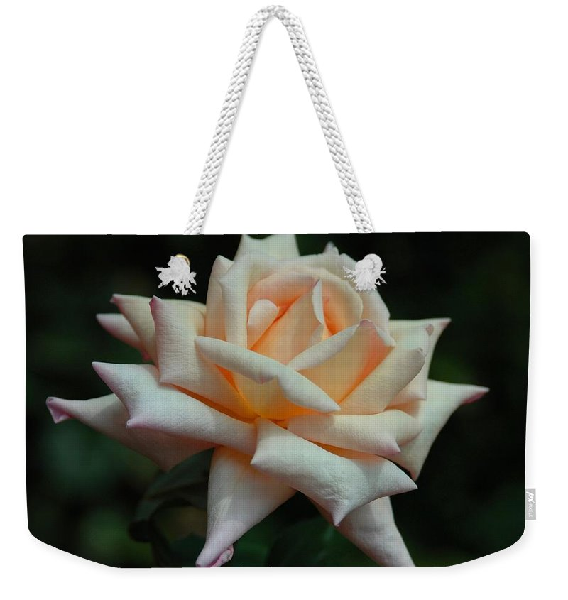 Floral Weekender Tote Bag featuring the photograph Only A Rose by Georgiana Romanovna