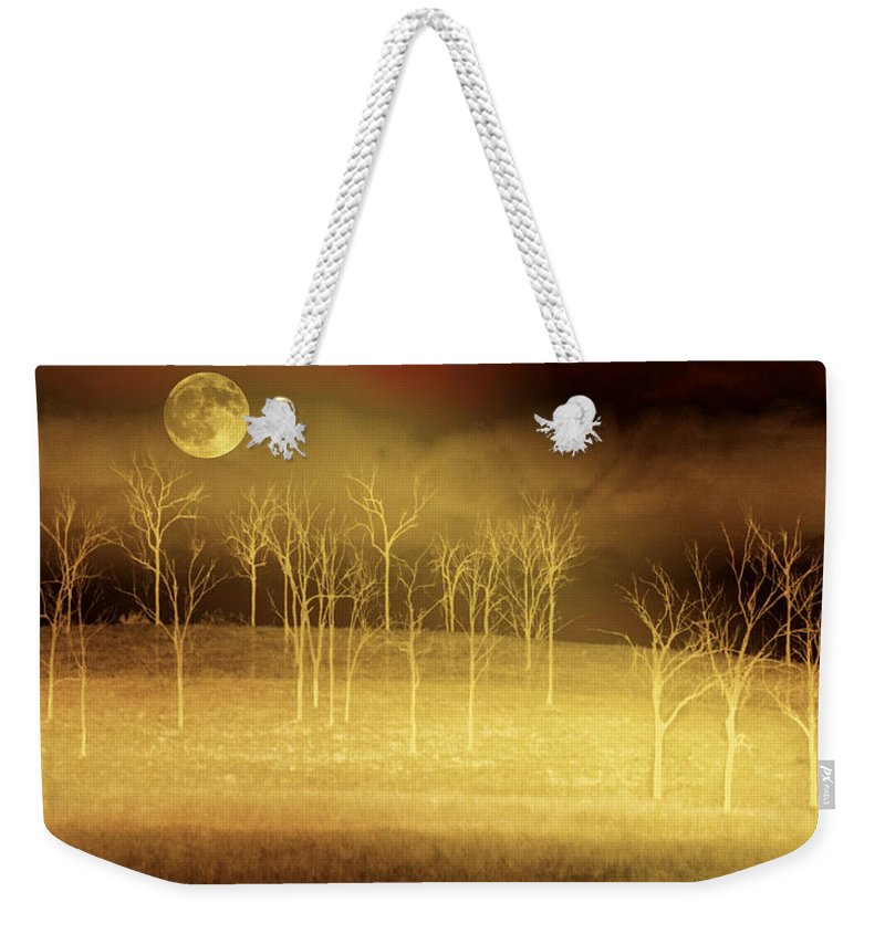 Landscapes Weekender Tote Bag featuring the photograph Only At Night by Holly Kempe