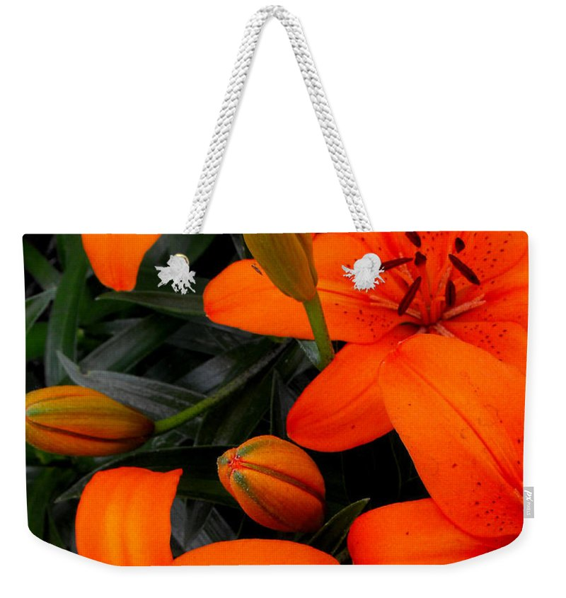 Botanical Weekender Tote Bag featuring the photograph Open And Closed by Ruth Palmer