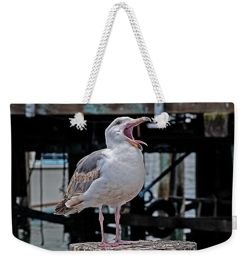 Seagull Weekender Tote Bag featuring the photograph Open Wide by Jay Billings