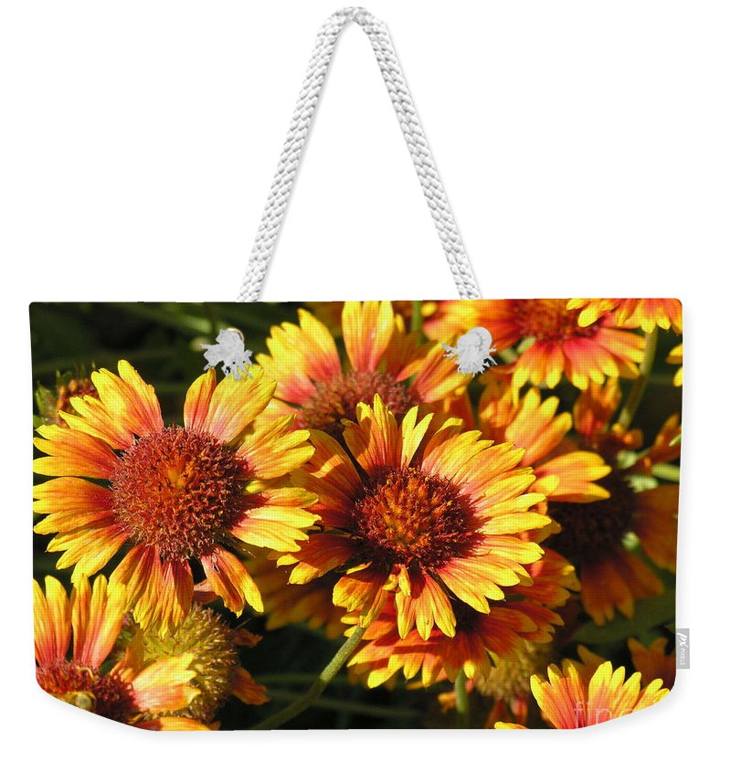 Orange Weekender Tote Bag featuring the photograph Orange And Gold by Diane Greco-Lesser